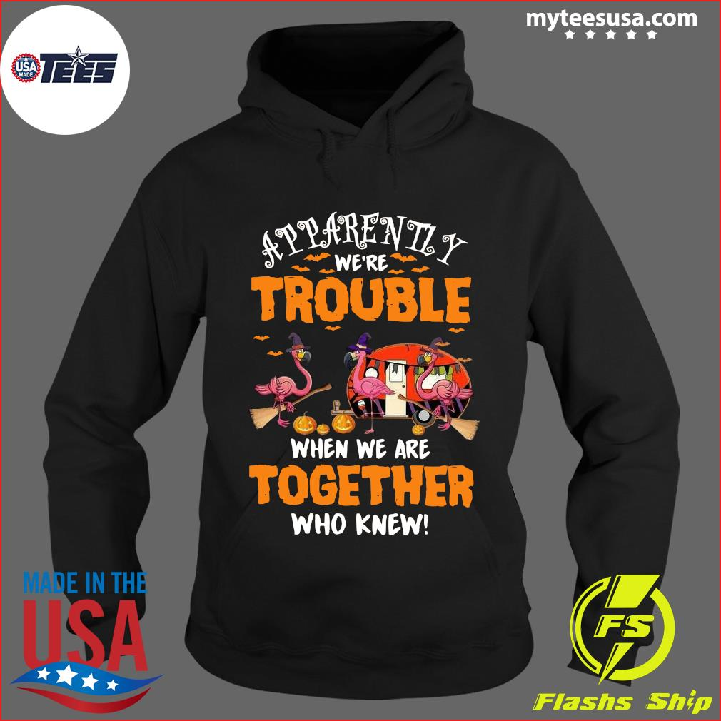 Flamingo Apparently We're Trouble When Are Together Who Knew Halloween T-Shirt Hoodie
