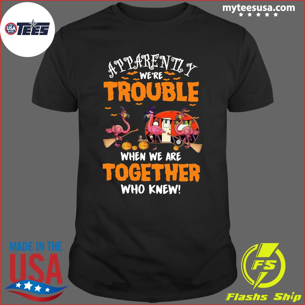 Flamingo Apparently We're Trouble When Are Together Who Knew Halloween T-Shirt